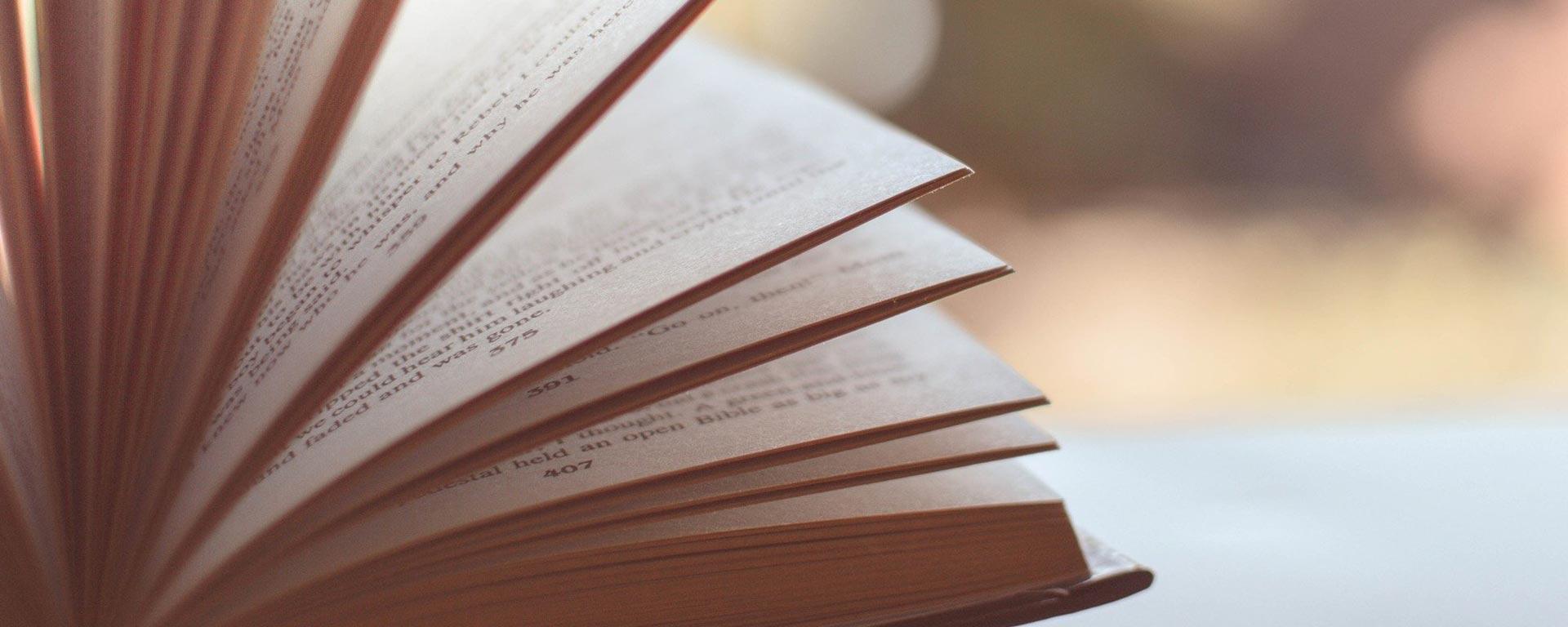 Bibliografía Asociación Unicidad
